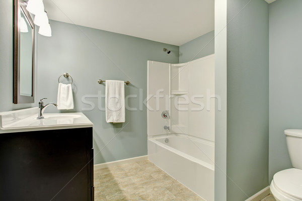 Clássico telha banho quarto de paredes Foto stock © iriana88w