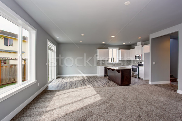 Modern and completely gray interior of home. Stock photo © iriana88w