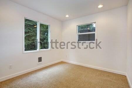 üres szoba kettő ablakok üres elefántcsont szoba Stock fotó © iriana88w