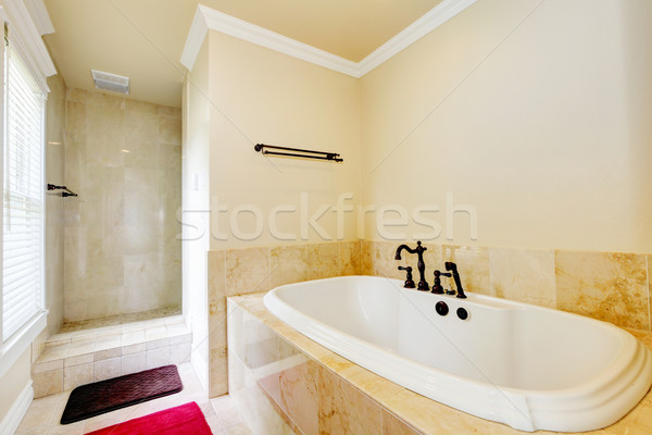Nice empty bathroom with large white tub and shower. Stock photo © iriana88w