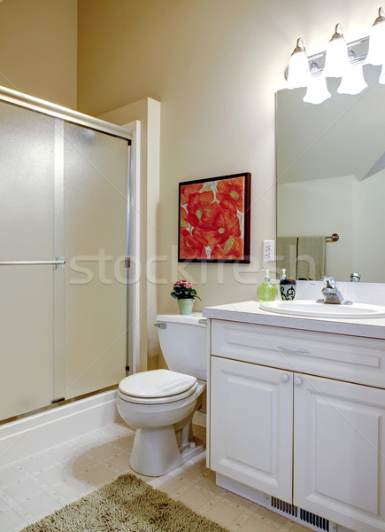 Cozy bathroom with white vanity Stock photo © iriana88w