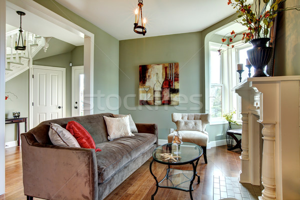 Elegant green living room with brown sofa and wood floor. Stock photo © iriana88w