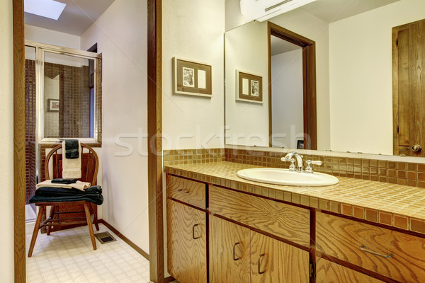 Outdated brown simple bathroom with one sink. Stock photo © iriana88w