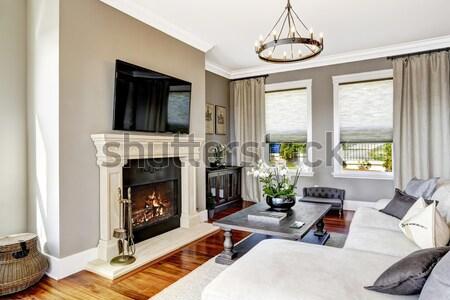 Luxo sala de estar interior francês windows lareira Foto stock © iriana88w