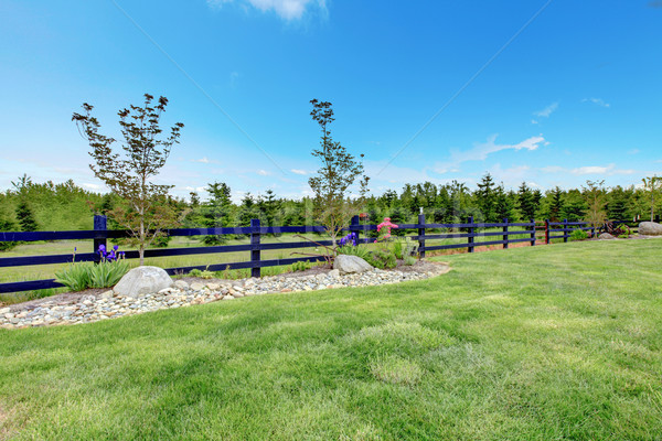 Stock photo: Backyard beautiful spring landscape with fence and forest.