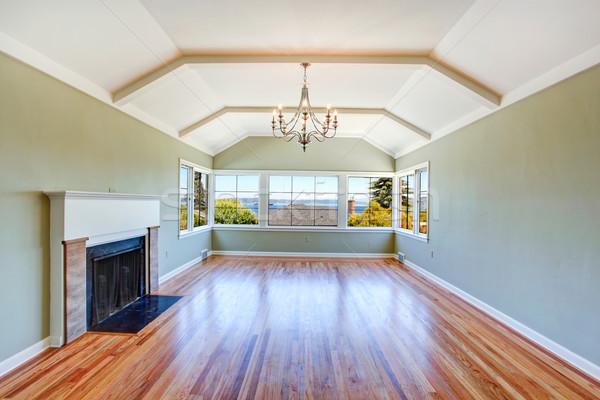 Lege woonkamer interieur plafond licht mint Stockfoto © iriana88w