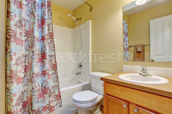 Traditional bathroom with shower bath. Stock photo © iriana88w