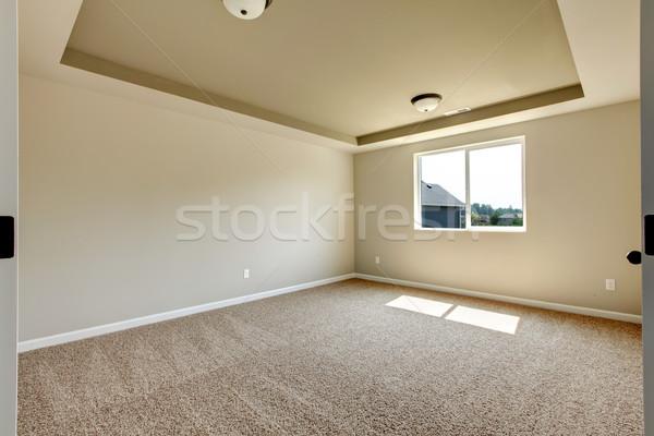 Nieuwe lege kamer beige tapijt ontwikkeling Stockfoto © iriana88w