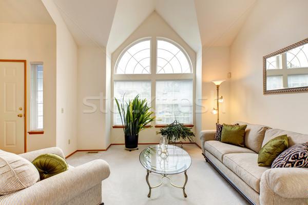 Luksusowe rodziny pokój miękkie kremowy sufit Zdjęcia stock © iriana88w
