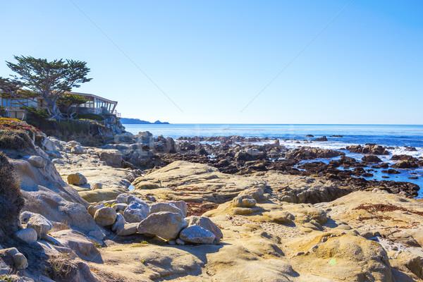 Beach. Carmel, California Stock photo © iriana88w