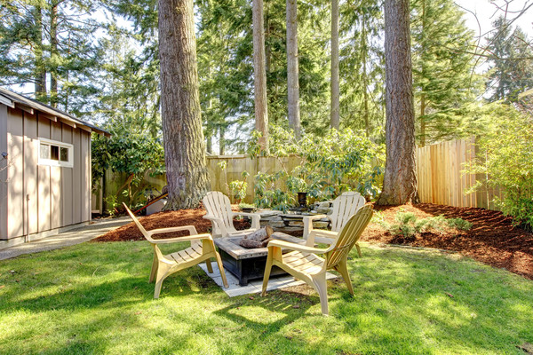 Home exterior Backyard with chairs and pine trees. Stock photo © iriana88w