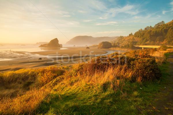Sunrise at Oregon coast, Pacific ocean, Cannon beach Stock photo © iriana88w