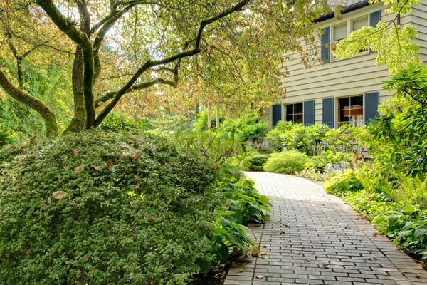 Nagy barna ház külső nyár kert északnyugat Stock fotó © iriana88w