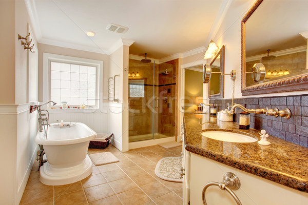 Luxury bathroom interior. Stock photo © iriana88w