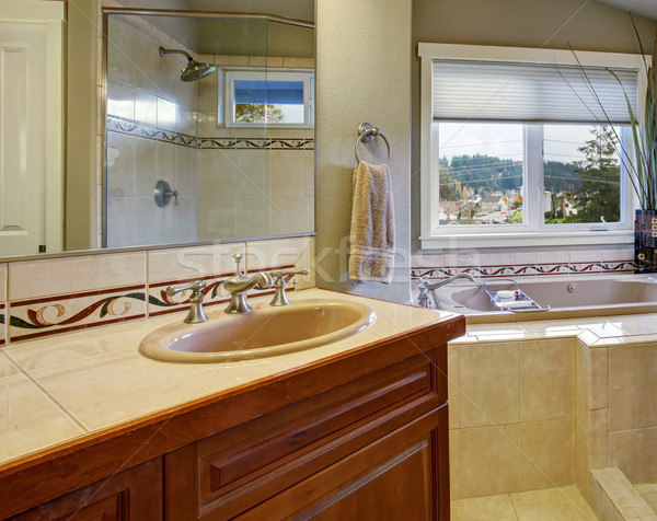 New bathroom conected to master bedroom. Stock photo © iriana88w