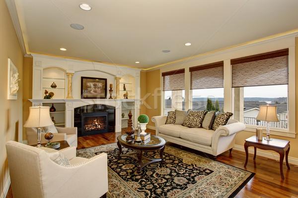 Ottimo soggiorno decorativo tappeto bianco mobili Foto d'archivio © iriana88w