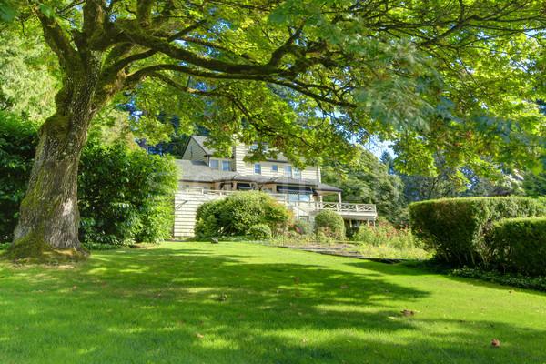 Brun extérieur de la maison vert été jardin Photo stock © iriana88w