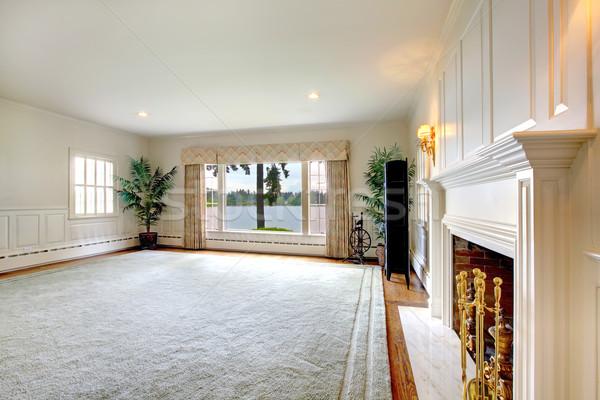 Groot historisch oude woonkamer interieur haard Stockfoto © iriana88w