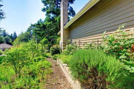 Stock fotó: Ház · külső · oldal · fal · közelkép · kilátás · ház