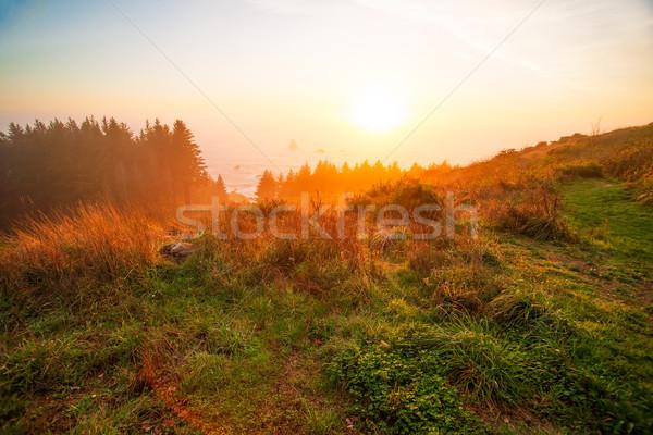 Sunrise at Oregon coast Stock photo © iriana88w