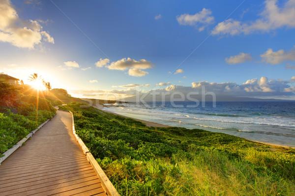 пляж путь закат Гавайи тропический пляж ходьбы Сток-фото © iriana88w