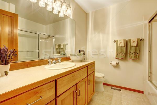 Desatualizado simples banheiro madeira branco casa Foto stock © iriana88w