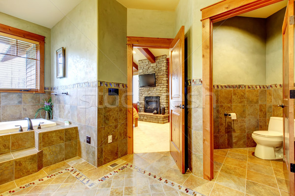 Luxury large master bathroom in mountain home. Stock photo © iriana88w