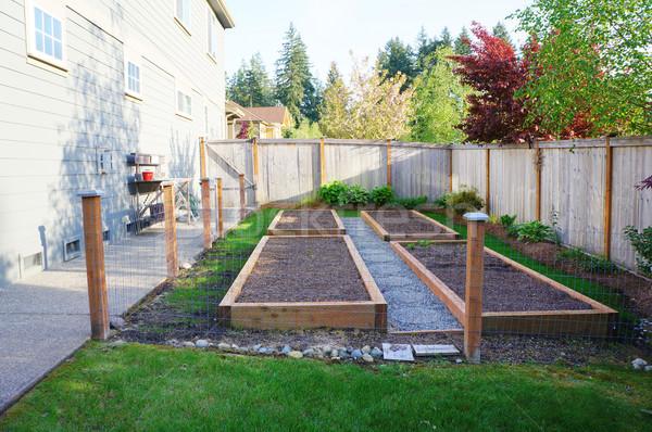 Klein plantaardige tuin huis Stockfoto © iriana88w