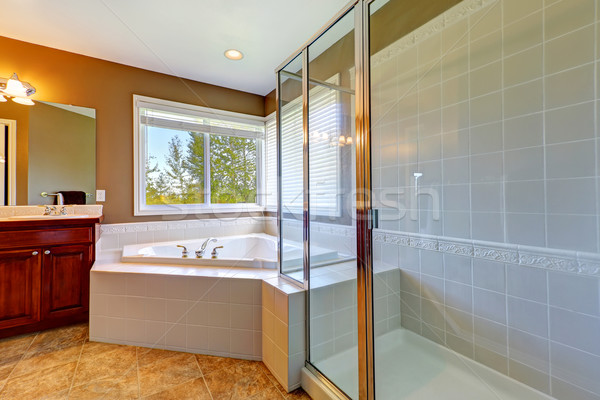 Bathroom interior with corner bath tub and screened shower Stock photo © iriana88w