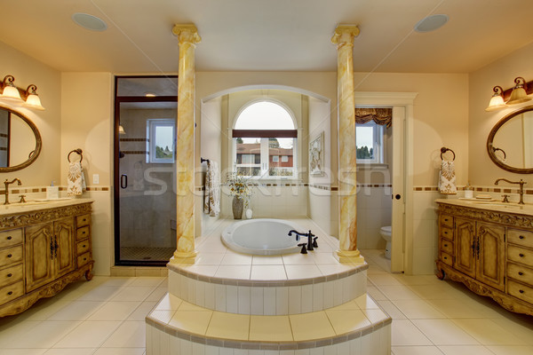 Large luxury bathroom with centerd bathub. Stock photo © iriana88w