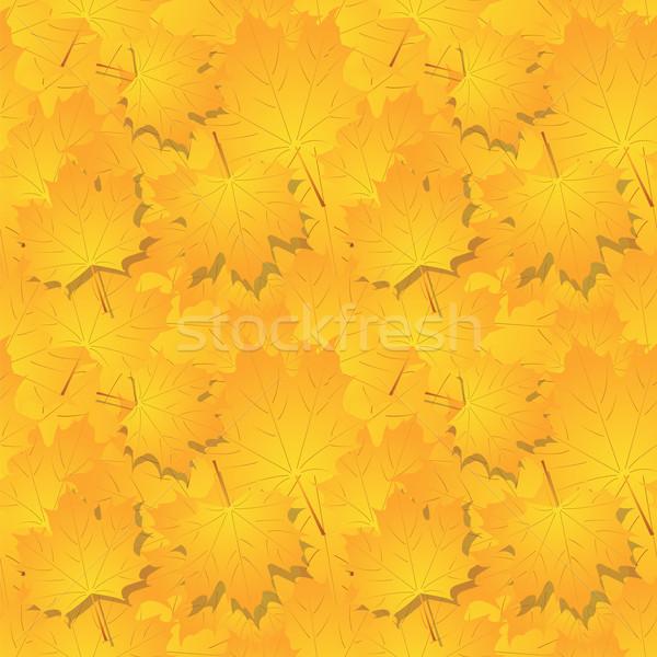 Veel najaar Geel bladeren boom Stockfoto © Irinavk