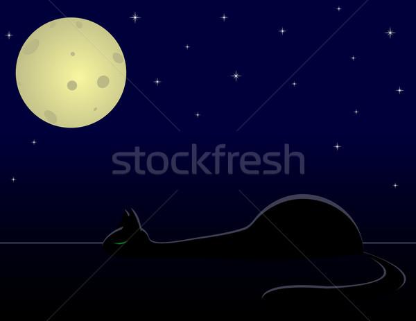 Fekete macska alszik éjszaka hold csillagok csillag Stock fotó © Irinavk