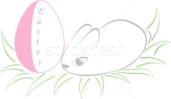 Húsvét nyúl tyúk tojás zöld fű fű Stock fotó © Irinavk