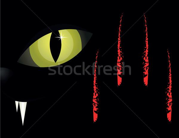 Stock photo: cat's eyes