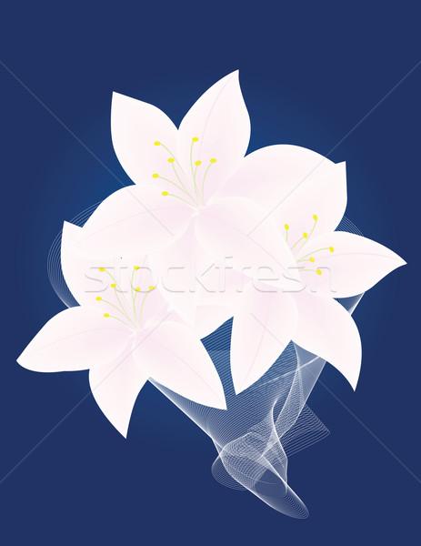 Liliomok sötét kék virágcsokor fehér Stock fotó © Irinavk