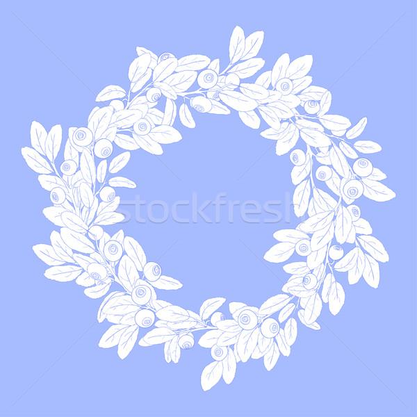 Corona marco arándano bayas azul Foto stock © Irinka_Spirid