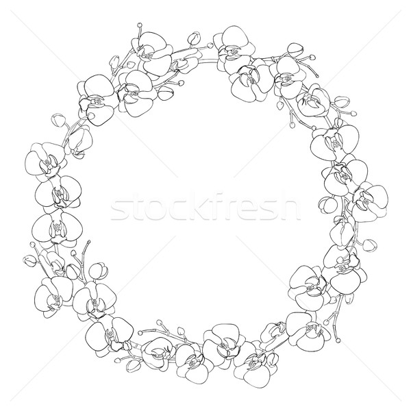 Naturales corona marco flores blanco Foto stock © Irinka_Spirid