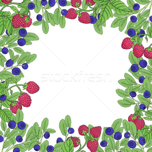 Berry cuadrados marco naturales frambuesa Foto stock © Irinka_Spirid