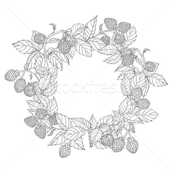 Ghirlanda frame lampone foglie frutti di bosco bianco Foto d'archivio © Irinka_Spirid