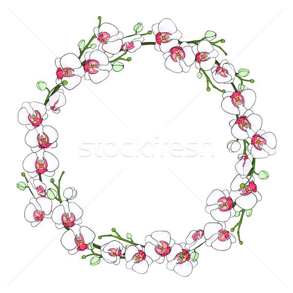 Naturale ghirlanda frame rami fiori bianco Foto d'archivio © Irinka_Spirid