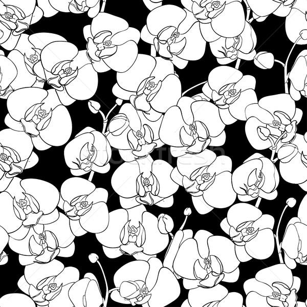 Senza soluzione di continuità naturale pattern fioritura orchidee verniciato Foto d'archivio © Irinka_Spirid