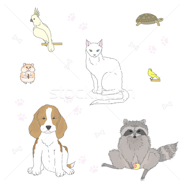 Set of pets Stock photo © Irinka_Spirid