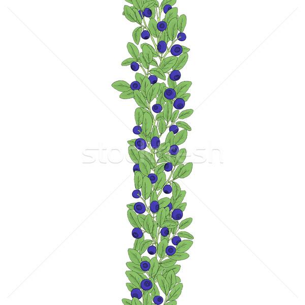 Frutti di bosco confine senza soluzione di continuità colorato mirtillo foglie Foto d'archivio © Irinka_Spirid