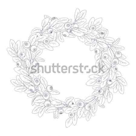 Corona marco arándano bayas blanco Foto stock © Irinka_Spirid
