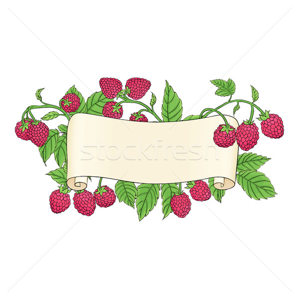 scroll with raspberries Stock photo © Irinka_Spirid
