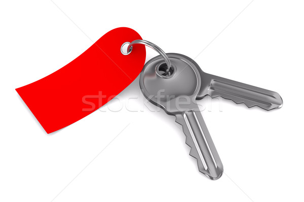 Isolated two keys on white background. 3D image Stock photo © ISerg