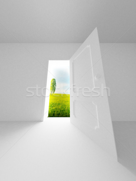 Zdjęcia stock: Krajobraz · za · otwartych · drzwi · 3D · obraz · drzewo