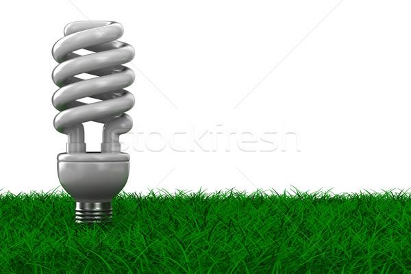 Stock fotó: Energia · takarékosság · villanykörte · fű · izolált · 3D