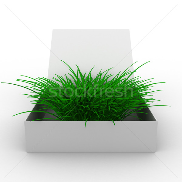 Stock photo: Open box with grass. Isolated 3D image