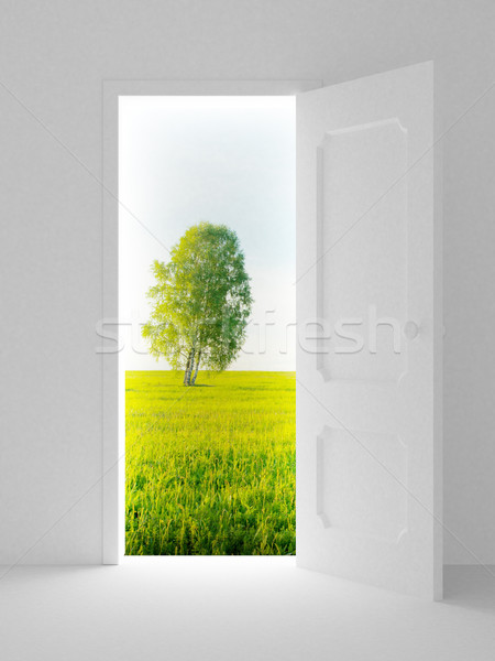 Stock photo: Landscape behind the open door. 3D image